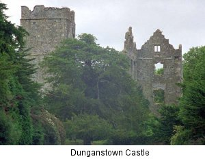Dunganstown Castle ((c) 1999 Anthony Houghton)