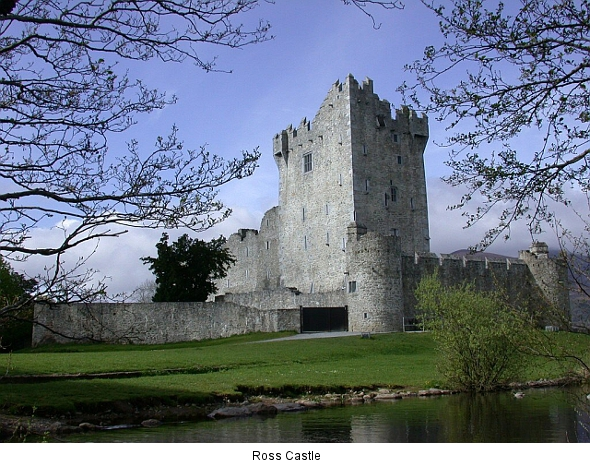 Ross Castle (killarneynationalpark.ie)